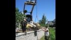 11-Large tree planting (5)