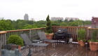 3-Beacon Street Boston rooftop garden (3)