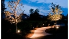 Path Lighting (3)