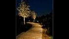Path Lighting (6)